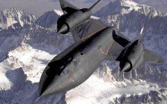 Tapeta ws_Blackbird_in_midair_2560x1600.jpg