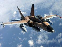 Tapeta ws_McDonnell_Douglas_F_A18_Hornet_1024x768.jpg