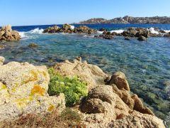 Tapeta la-maddalena-island.jpg